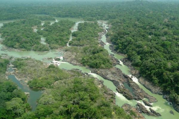 Balanços oficiais de desmatamento da Amazônia confirmam dados de sistema de alerta; entenda