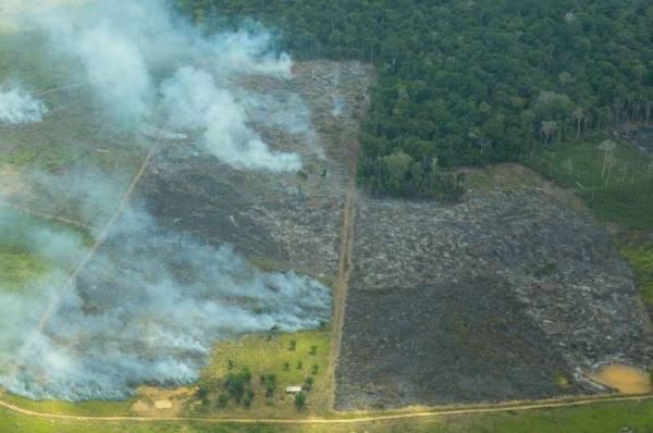 FOCOS DE QUEIMADAS NA AMAZÔNIA E O MAIOR DOS ÚLTIMOS QUATRO ANOS DIZ IPAM