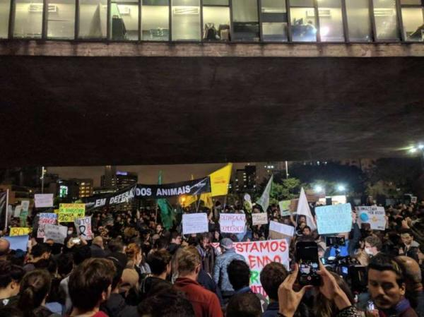 São Paulo, Rio e Salvador têm protestos contra incêndios na Amazônia