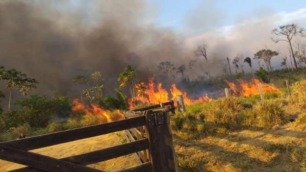 A trágica história do casal que morreu fugindo de queimada em Rondônia