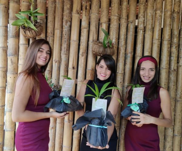 Dia da Árvore: jovem empreendedora presenteia clientes com mudas