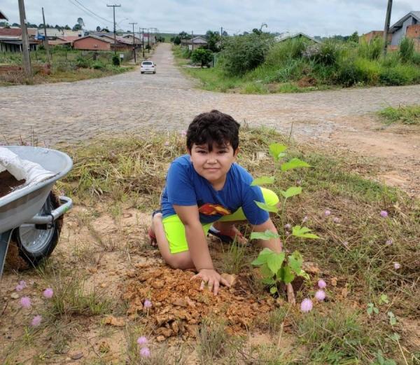Programa de arborização em Ji-Paraná atende áreas com espaços esportivos