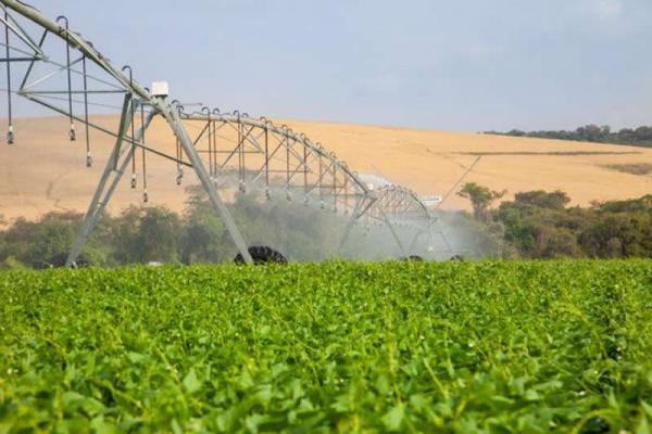 Parceria quer ampliar irrigação por energia solar