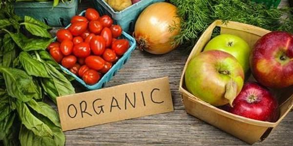 PRODUÇÃO - Alimentos orgânicos renderam R$ 4 bilhões a produtores brasileiros