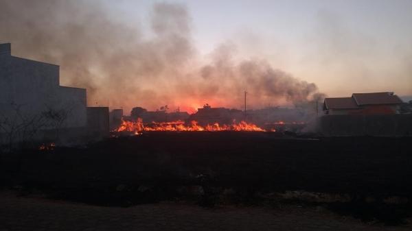 Prefeitura lança campanha contra queimadas em Ji-Paraná